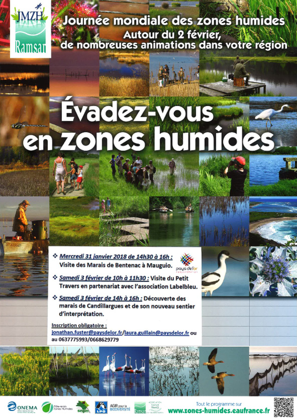 affiche journee zones humides